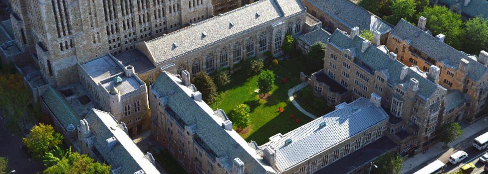 Yale - Leadership camp at university of Cambridge, Yale or ST. Andrews