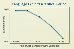 Gráfico de asimilación del segundo idioma - Aprender un segundo idioma desde niño - Ertheo Education and Sports