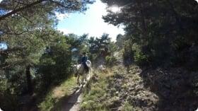 A typical day at Campamento Hípica en Andorra