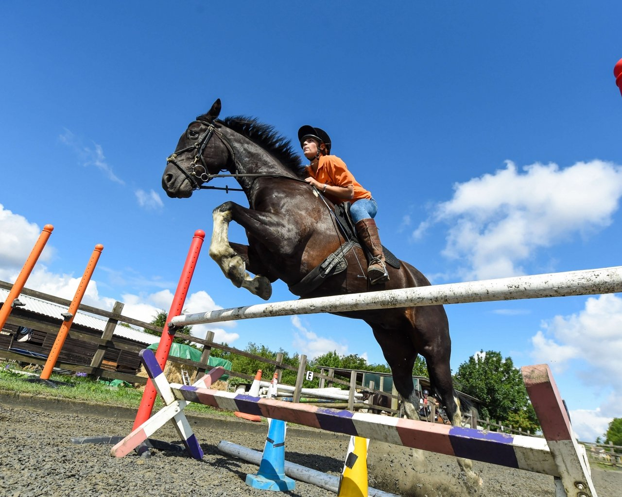 Equestrian Camp in the UK - Summer Horse Camps the UK on